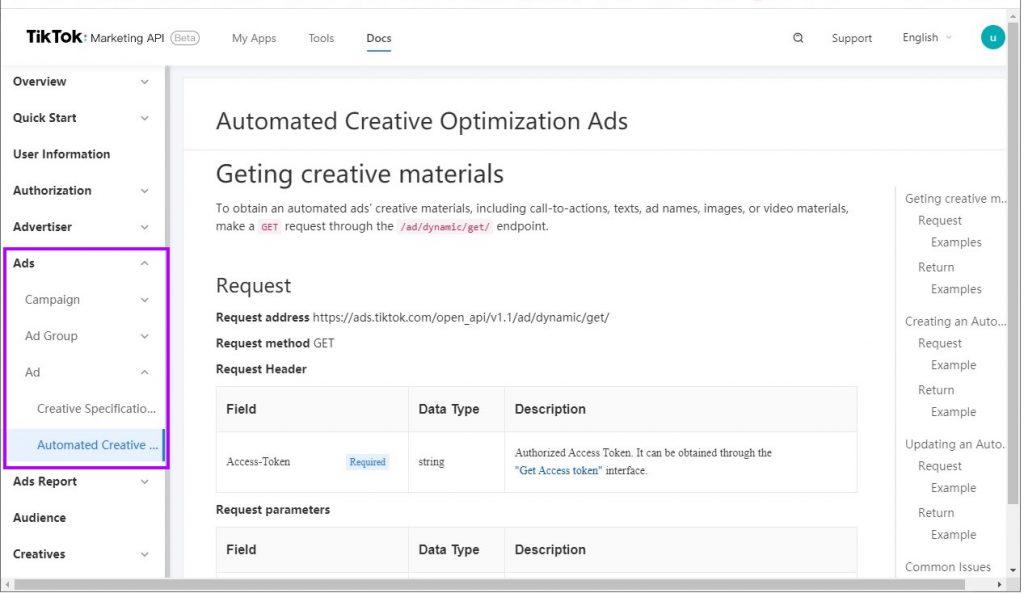TikTok API endpoint documentation example