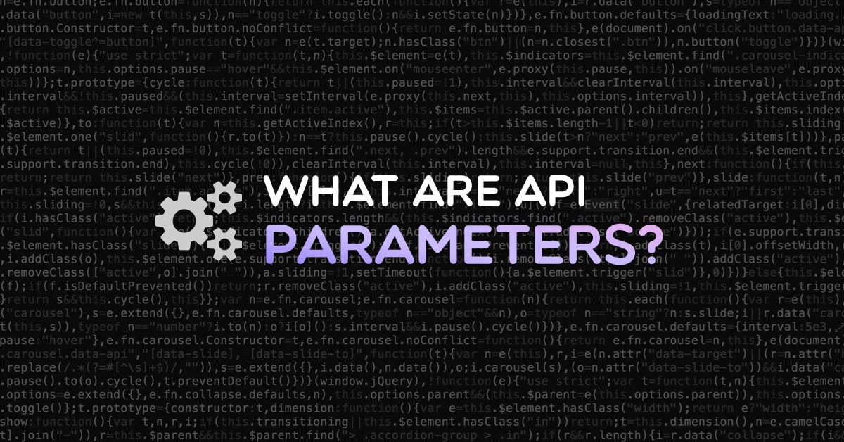 What are API parameters?