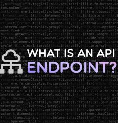 What is an API endpoint?