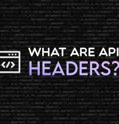 What are API headers?