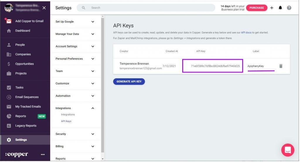 Displaying the API Key